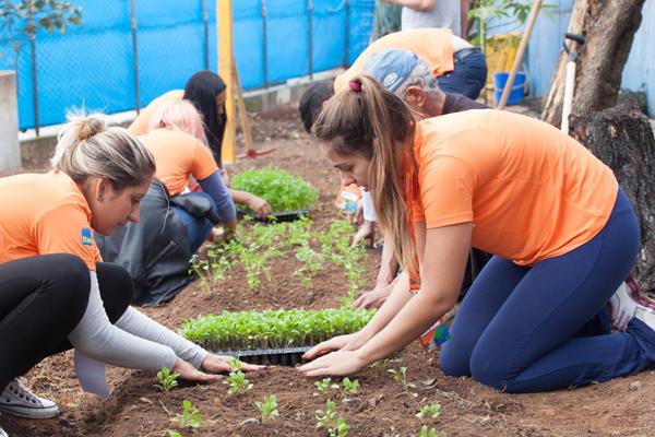 Colaboradores do Itaú-Unibanco, vestindo camisetas na cor laranja, plantam vegetais numa horta comunitária